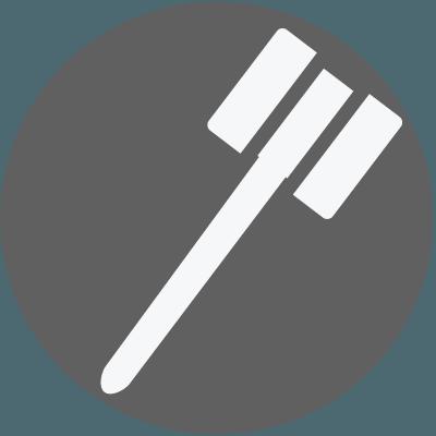 Legal Gavel Icon