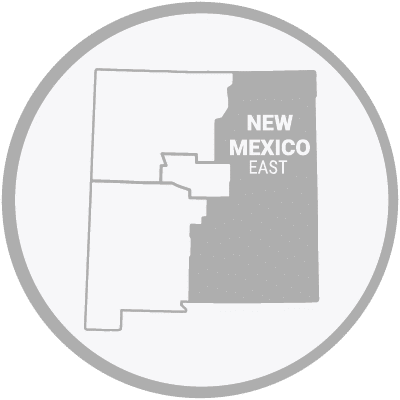 Eastern New Mexico Map Icon